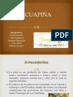 Tecnicas 2da Tutoria ECUAPIÑA (3)