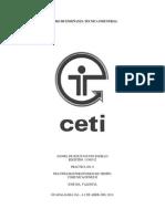 11300312_practica_6_6c2.pdf