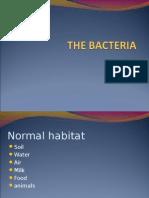 Aathe Bacteria