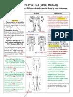 JSJ+R+BMM Tratamiento Riñones e insuficiencia renal combinado2
