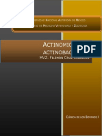 Actinomicosis y Actinobacillosis