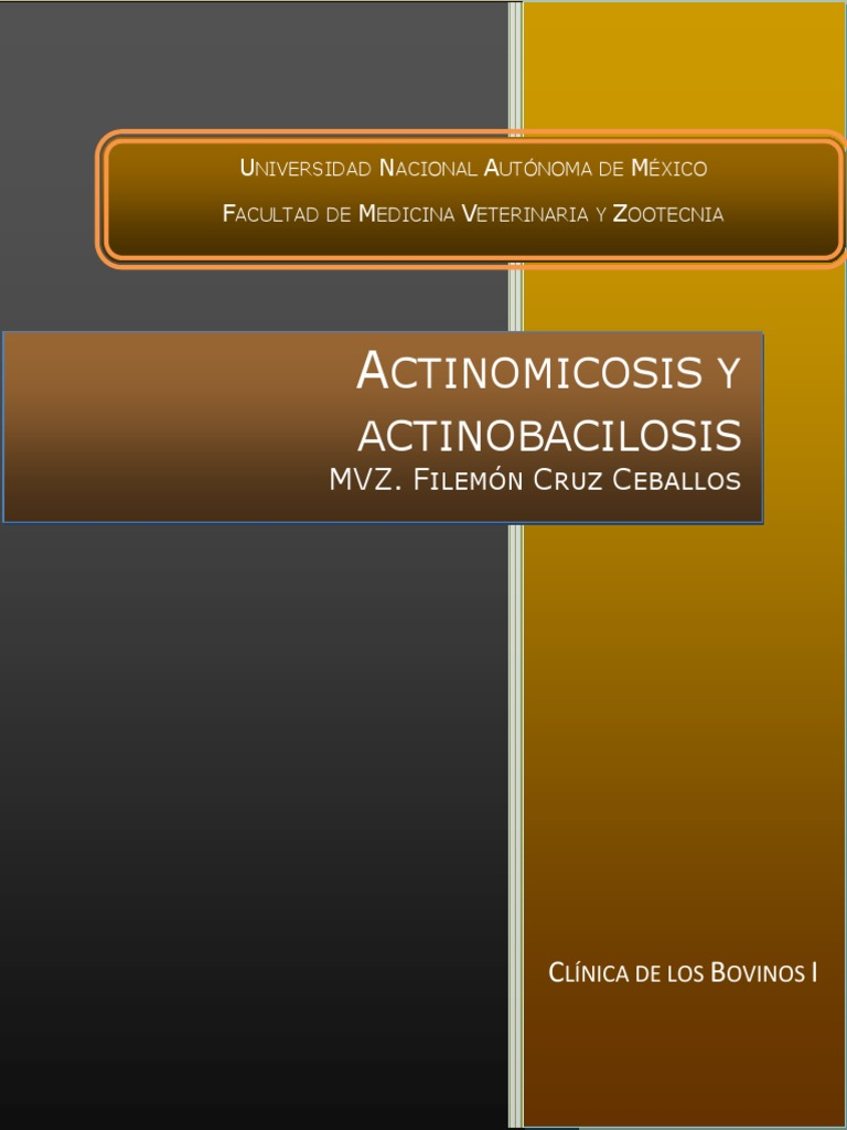 Actinomicosis Intestinal Pdf