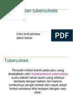 Pengobatan Tuberculosis Mutakhir