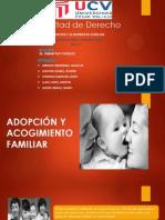 Adopcion y Acogiminto Familiar -Diapos-dany Cisneros