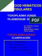 Toxoplasma y Plasmodium