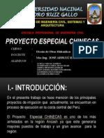 72006529-Proyecto-Especial-Chinecas (1).pdf