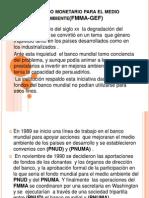 El Fondo Monetario Para El Medio Ambiente(FMMA-GEF) DIAPOSSSS