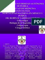 Mortalidad Materna en México y Puebla [Autoguardado] New