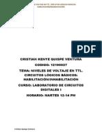 Cristian Quispe Ventura-lab.digitales i -Informe Previo