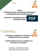 Cadena Productiva de La Guayaba y Su Industria (2)
