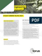 Steam Turbine Valves