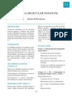 11-amuscular.pdf