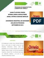Diapositivas de Analicis