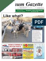 Platinum Gazette 05 September 2014