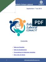 EnlaceLaboral DisciplinaTecnologia Septiembre 2014 092014