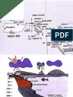 Curso - Anatomy of a Reef.pptx