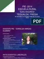 PIE -2014 Presentación