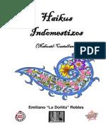 Haikus Indomestizos Nahuatl