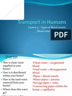 Transport in Humans- 2013- Lesson4- Blood Vessels