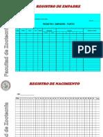 Registros de Cuyes