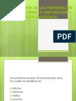 CLASIFICACIÓN DE LAS PROTEINAS EN BASE A SU.pptx