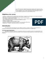 Manual Rhinoceros (Iniciante)
