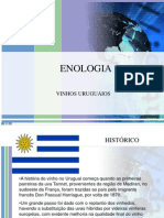 ENOLOGIA URUGUAI.ppt