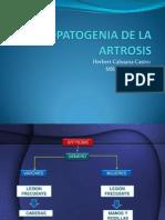 Etiopatogenia de La Artrosis