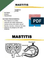 MASSTITIS
