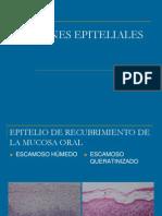 Lesion Ese Pit Elia Les