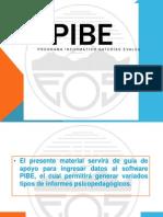 Introducción Pibe 2013