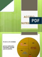 Acceso nutrimental (1)