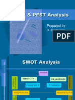 Swot & Pest Analysis