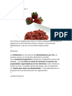 LIOFILIZACION.docx
