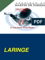 Clase Cuello Visceral Laringe