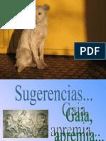 Gaia apremia animada