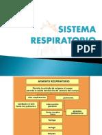 aparato-respiratorio-091007190348-phpapp01