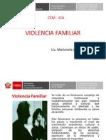 Violencia Familiar y Sexual