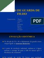 Formas de Guarda de Filho ( Slide)