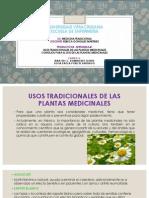 Médicina Tradicional (Expo)