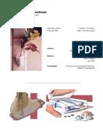 The Alternative Prosthesis - Final Report Internship Sri Lanka 2002 - W.D.van Dorsser and B.M.wisse