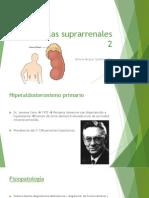 Glandulas Suprarenales 2