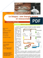 Plaquette Biogaz 2008-10-05 Version Relu CB