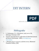 Audit Intern Suport de Curs ID 2013