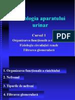 renal1