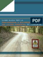 Linee guida sicurezza+Schede