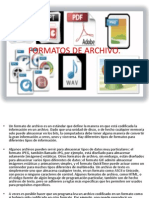Formatos de Archivo-1
