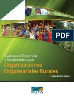 Guia Para El Fortalecimiento y Desarrollo de Organizaciones