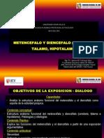 Metencefalo y Diencefalo (Cerebelo, Talamo, Hipotalamo). Sesion Nro 6