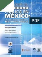 Indicadores de seguridad pública en México